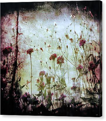 Wonderland Canvas Print by Trish Mistric