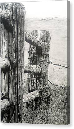 Wood And Wire Canvas Print by Jackie Mestrom