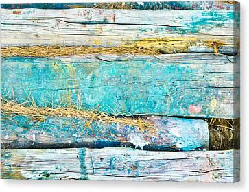 Wood Logs Canvas Print by Tom Gowanlock