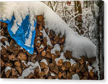 Wood Pile In The Snow Canvas Print by Paul Freidlund