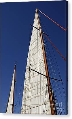 Wooden Masts And Sails Canvas Print by Sami Sarkis