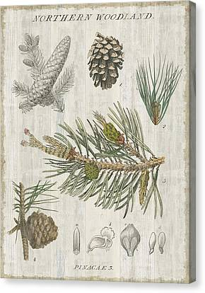 Woodland Chart IIi Canvas Print by Sue Schlabach