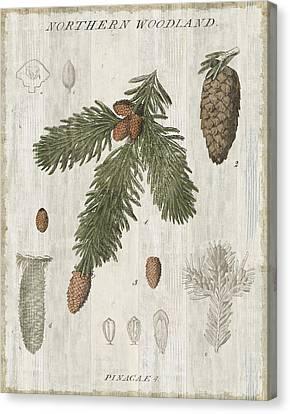 Woodland Chart V Canvas Print by Sue Schlabach