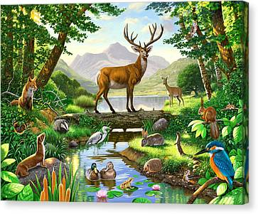 Woodland Harmony Canvas Print by Chris Heitt