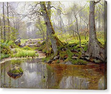 Woodland Pond Canvas Print by Peder Monsted