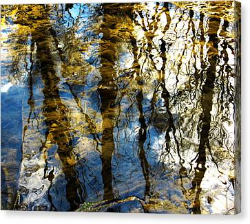 Woodland Reflections Canvas Print by Shawna Rowe