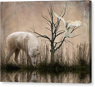 Woodland Wolf Reflected Canvas Print by Sharon Lisa Clarke