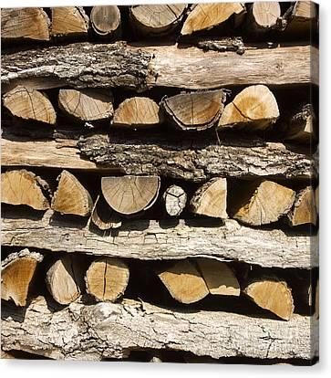 Woodpile. Canvas Print by Bernard Jaubert