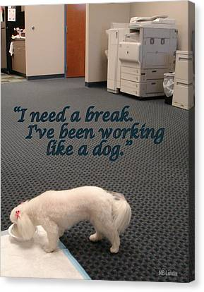 Working Dog Canvas Print by Mary Beth Landis