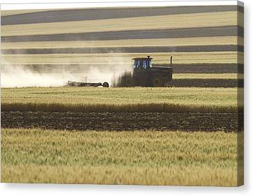 Working Farmer Canvas Print by James BO  Insogna