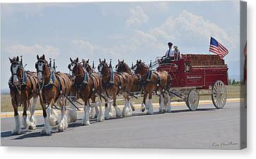 World Renown Clydesdales 2 Canvas Print by Kae Cheatham