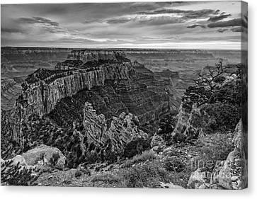 Wotan's Throne North Rim Grand Canyon National Park - Arizona Canvas Print by Silvio Ligutti