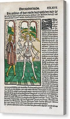 Wound Man And Alchemy Canvas Print by National Library Of Medicine
