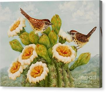 Wrens On Top Of Tucson Canvas Print by Summer Celeste