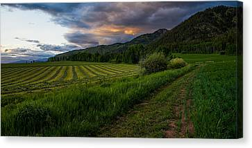 Wyoming Pastures Canvas Print by Chad Dutson