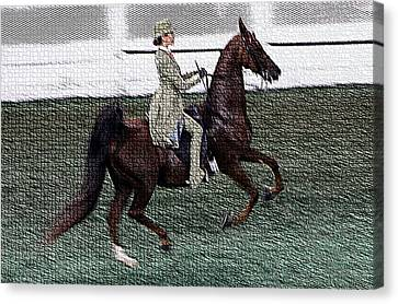 Xivd - World Championship Horse Show - Louisville Ky Canvas Print by Thia Stover