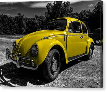 Yellow Beetle 001 Canvas Print by Lance Vaughn