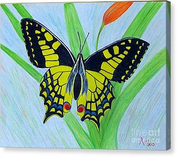 Yellow Butterfly Canvas Print by Peggy Miller