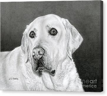 Yellow Labrador Retriever- Bentley Canvas Print by Sarah Batalka