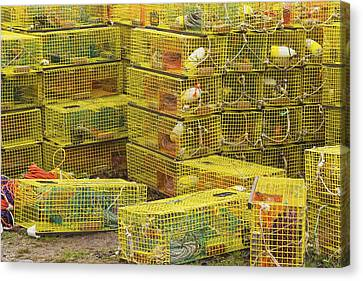 Yellow Lobster Traps In Maine Canvas Print by Keith Webber Jr