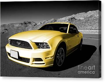 Yellow Mustang Canvas Print by Rob Hawkins