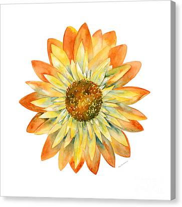 Yellow Orange Daisy Canvas Print by Amy Kirkpatrick