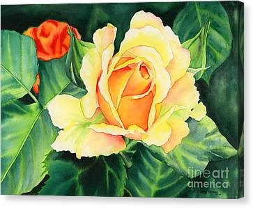 Yellow Roses Canvas Print by Hailey E Herrera
