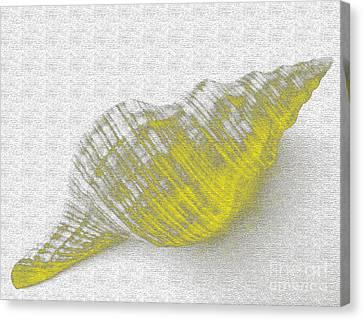 Yellow Seashell Canvas Print by Carol Lynch