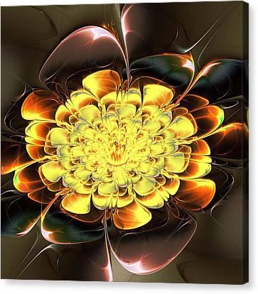 Yellow Water Lily Canvas Print by Anastasiya Malakhova