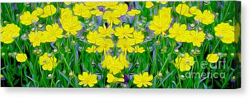 Yellow Wild Flowers Canvas Print by Jon Neidert