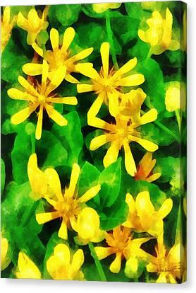 Yellow Wildflowers Canvas Print by Susan Savad