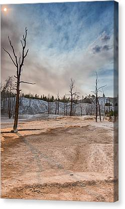 Yellowstone Desolation Canvas Print by Andres Leon
