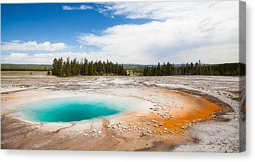 Yellowstone Prismatic Spring Canvas Print by Adam Pender