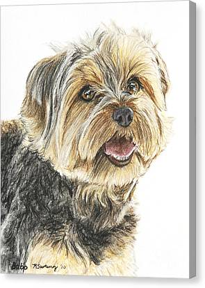 Yorkie In Color Canvas Print by Kate Sumners