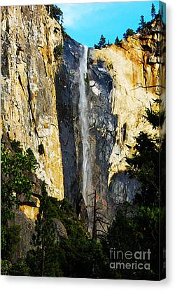 Yosemite Falls Canvas Print by Laraine  C Photography
