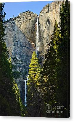 Yosemite Falls With Late Afternoon Light In Yosemite National Park. Canvas Print by Jamie Pham