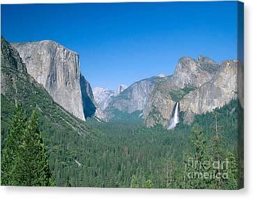 Yosemite Valley Canvas Print by David Davis