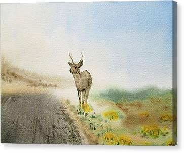 Young Deer On The Foggy Road Canvas Print by Irina Sztukowski