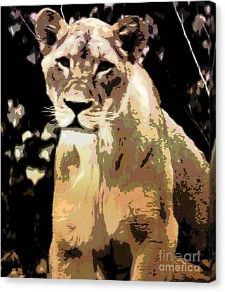 Young Lion Canvas Print by Kathleen Struckle