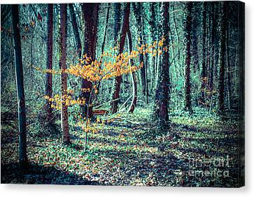 Youngster Canvas Print by Hannes Cmarits