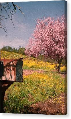 You've Got Spring Canvas Print by John K Woodruff