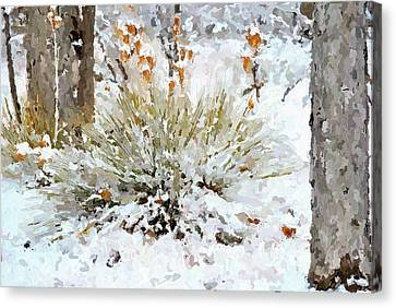 Yucca In The Snow Canvas Print by John Cullum