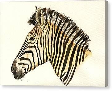 Zebra Head Study Canvas Print by Juan  Bosco