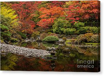 Zen Foliage Colors Canvas Print by Mike Reid