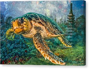 Zen Garden Canvas Print by Debra and Dave Vanderlaan