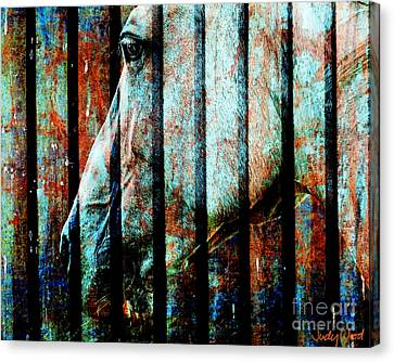 Zeniah Variation 11 Canvas Print by Judy Wood