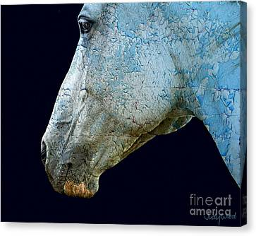 Zeniah Variation 13 Canvas Print by Judy Wood