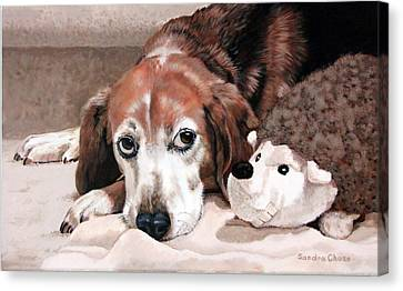 Zeppy And Lovey Canvas Print by Sandra Chase