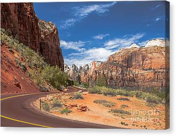 Zion Mount Carmel Highway Canvas Print by Robert Bales
