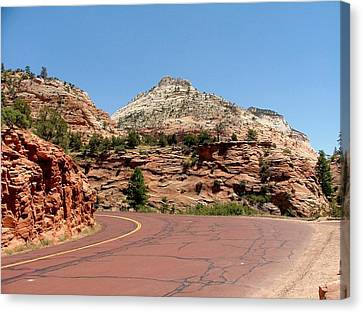 Zion N P 6 Canvas Print by Nelson Skinner